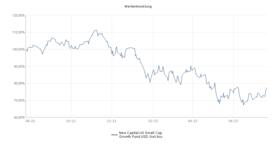 New Capital US Small Cap Growth Fund USD Inst Acc Fonds Performance